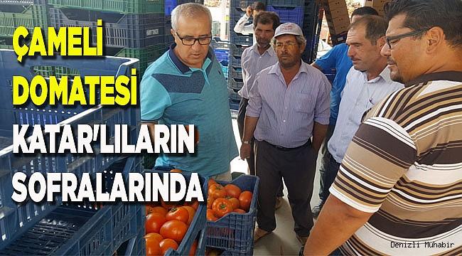 ÇAMELİ DOMATESİ KATAR'LILARIN  SOFRALARINDA