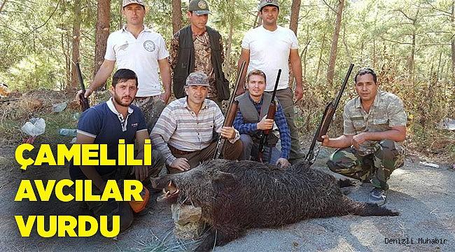 Çamelili avcılar 200 kilo ağırlığında domuz avladı.