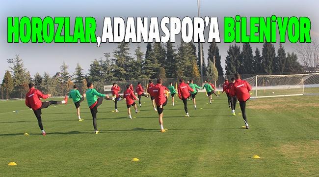 DENİZLİSPOR, ADANASPOR HAZIRLIKLARINA BAŞLADI