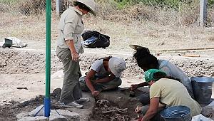 Höyükten 8 bin 750 yıllık kemik orak çıktı