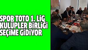 DENİZLİSPOR'U FIRAT TEMSİL ETTİ