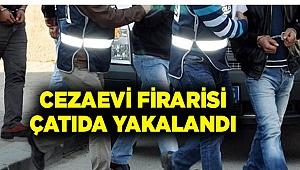 POLİS, ÇATIDA YAKALADI