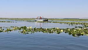 Nilüferleriyle Ünlü Işıklı Gölü Doğaseverleri Ağırlıyor