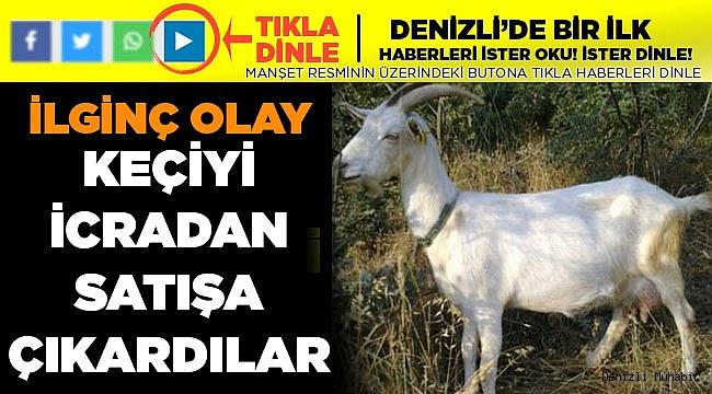 Buda Oldu! keçi İcradan Satılığa Çıktı