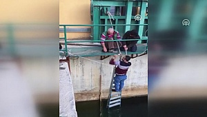 HES'te suya düşmek üzere olan kedi yavrusunu teknisyen kurtardı
