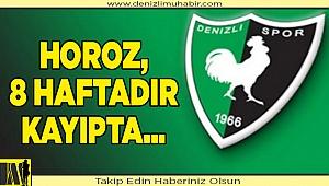 YukatelDenizlispor, Süper Lig'de 8 haftadır kazanamıyor
