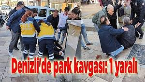 Denizli'de park kavgası: 1 yaralı