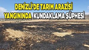 Denizli'de tarım arazisi yangınında kundaklama şüphesi