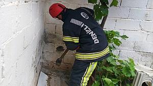 İtfaiye ekipleri sıkışan kediyi kurtarmak için duvarı deldi