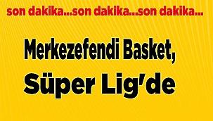Merkezefendi Basket,Süper Lig'de