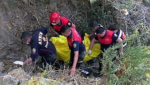 Eşi ve oğlunun önünde uçuruma yuvarlandı: 1 ölü