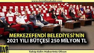 Merkezefendi Belediyesi'nin 2021 Yılı Bütçesi 250 Milyon TL