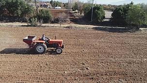 Buğdayın atası Siyez Tavas topraklarıyla buluştu.
