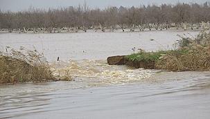 Menderes Nehri alarm vermeye başladı