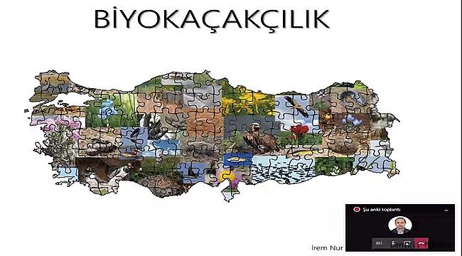 Zengin endemik çeşitlilik Türkiye'yi biyokaçakçılıkta hedef haline getiriyor
