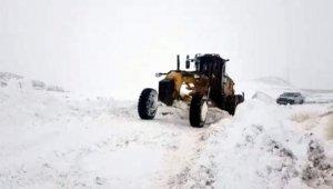 Siirt'te kardan kapanan 12 köy yolu açıldı