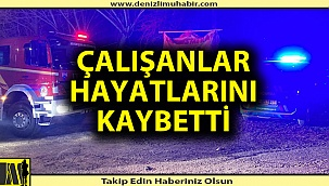 Denizli'de yangın; 3 ölü