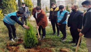 Kilis Ülkü Ocakları, şehit Çakıroğlu anısına fidan dikti