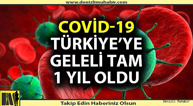 Türkiye'de ilk korona virüs vakasının görülmesinden bu yana tam 1 yıl geçti