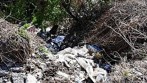 Buldan Belediyesi'nden bahar temizliği