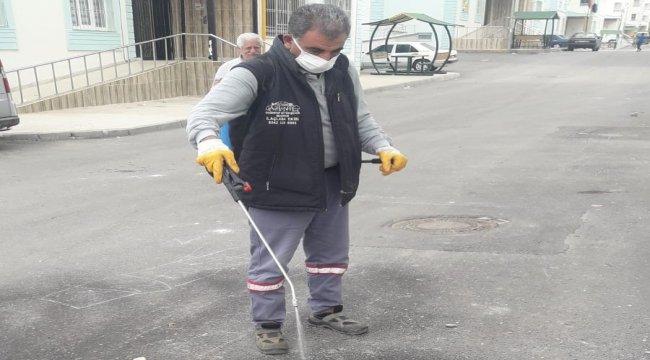 Gaziantep'te toprak piresi mücadelesi